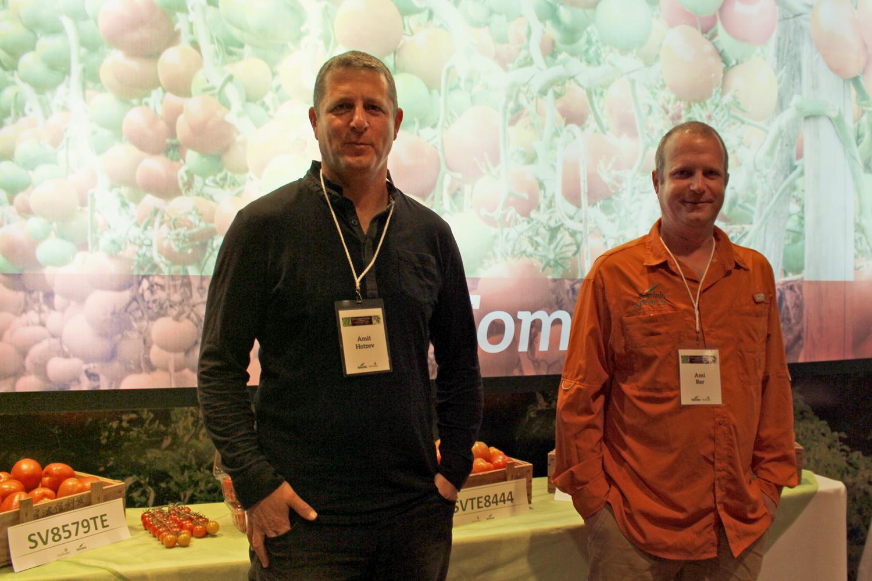 Los genetistas de tomate Amit Hotzev y Ami Bar.